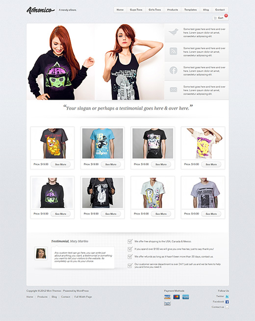 Amonico WordPress eCommerce Theme