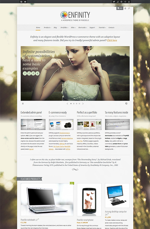Enfinity WordPress eCommerce Theme