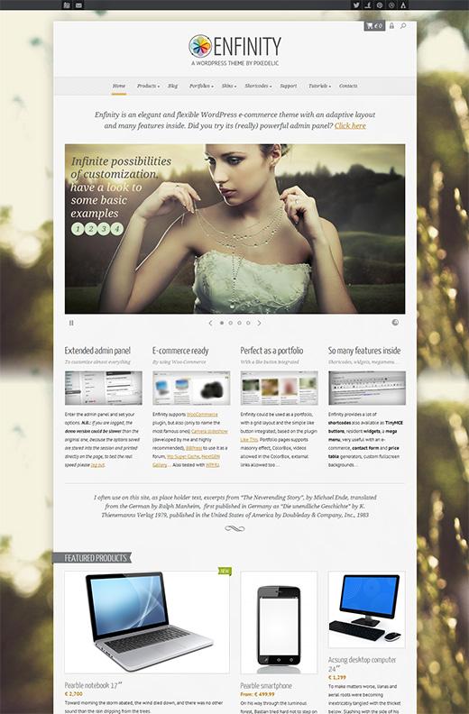 Enfinity-WordPress-eCommerce-Theme