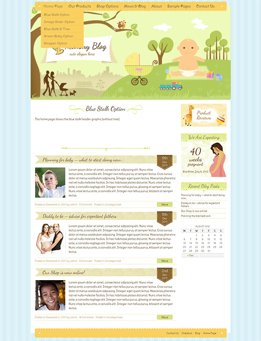 Mommy-Blog-WordPress-eCommerce-Theme
