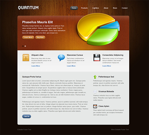 Quantum Business WordPress Theme