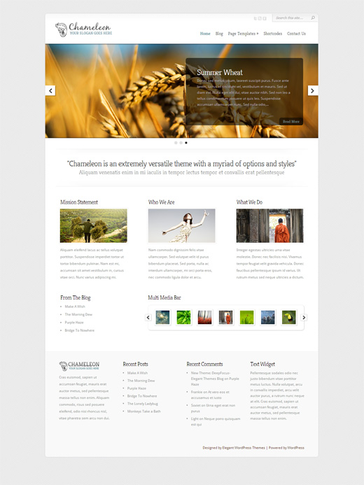 Chameleon Corporate WordPress Theme