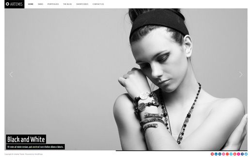 Artemis Photography WordPress Theme