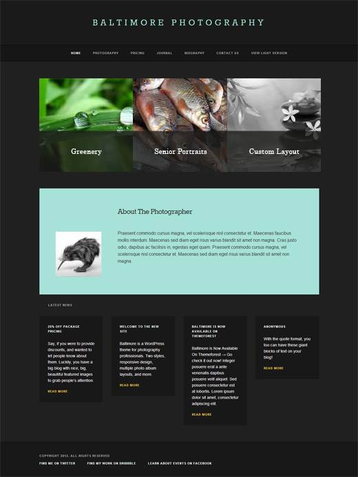Baltimore-Photography-Portfolio-WordPress-Theme