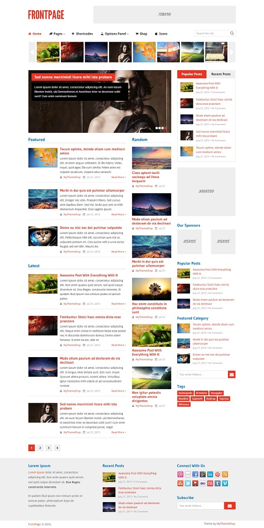 FrontPage WordPress Theme