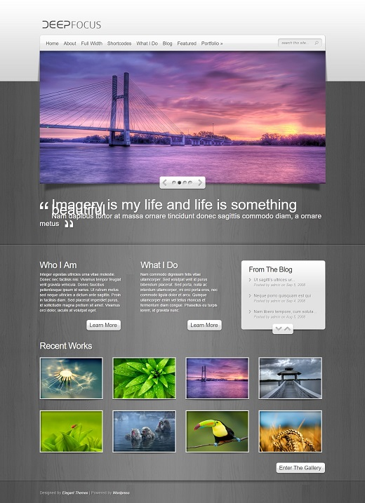DeepFocus Photography WordPress Theme