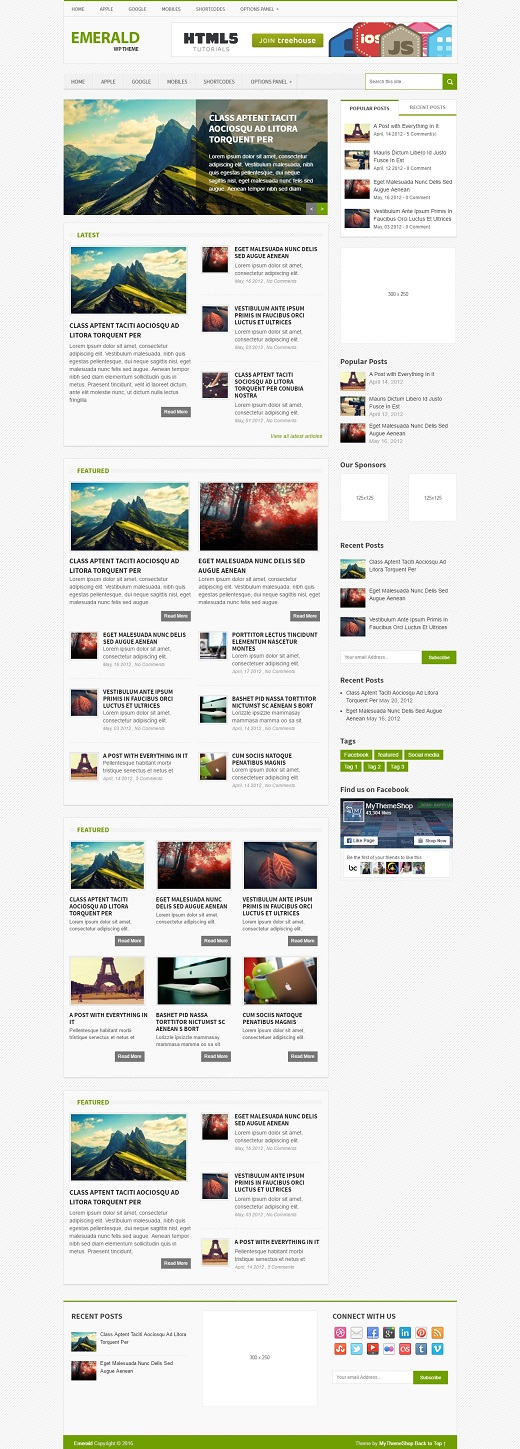 Emerald WordPress Theme