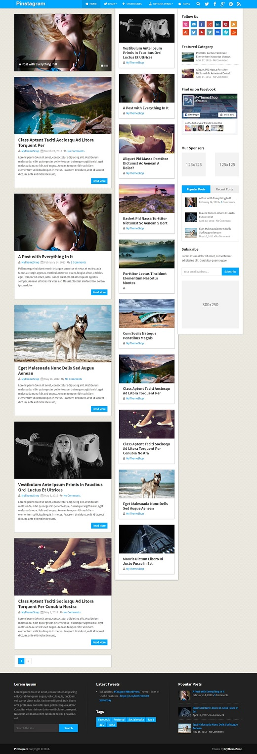 Pinstagram WordPress Theme
