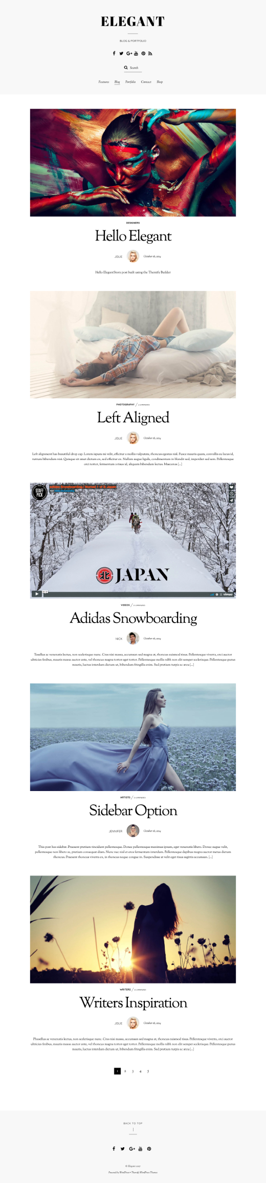 Elegant Theme - Minimal Blog & Portfolio