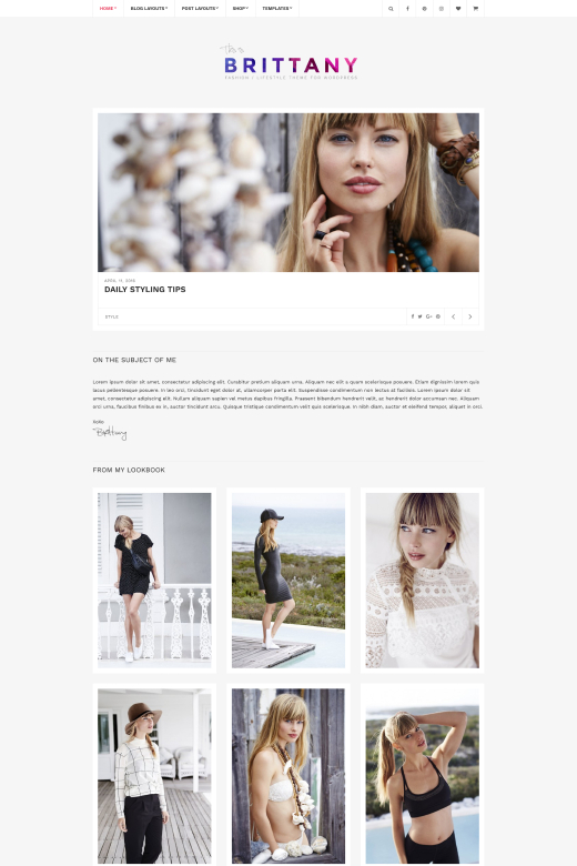 Brittany - Blogging Theme for WordPress