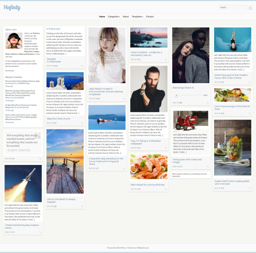 Pinfinity - Pinterest-like theme for WordPress - CSSIgniter