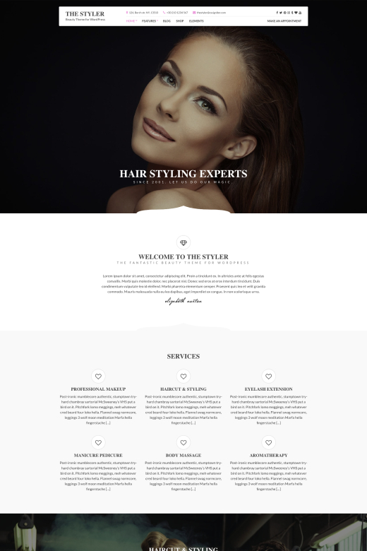 The Styler WordPress Theme – CSSIgniter